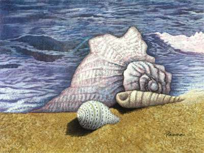 Seashell paintings - Sea Shells 1 - Panna Paintings