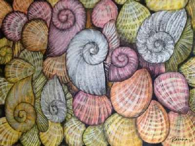 Abstract shell paintings - Panna Paintings - Colorful Shells